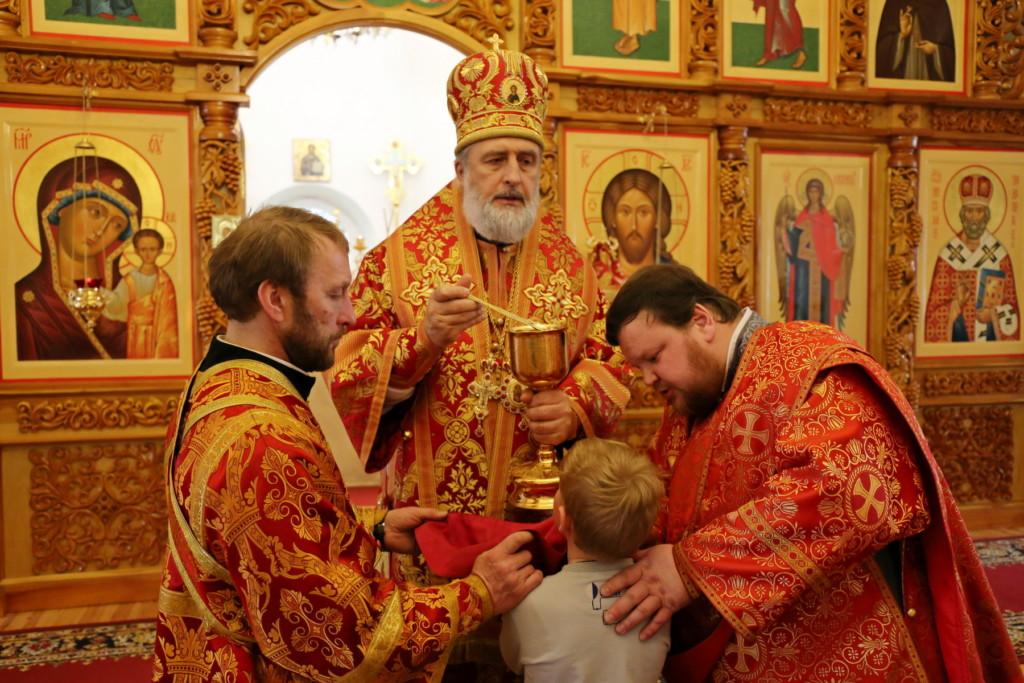 Божественная литургия. Шадринск. 15.04.2018 г.