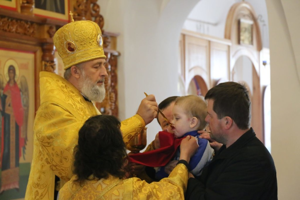 Божественная литургия. Шадринск. 10.06.2018 г.
